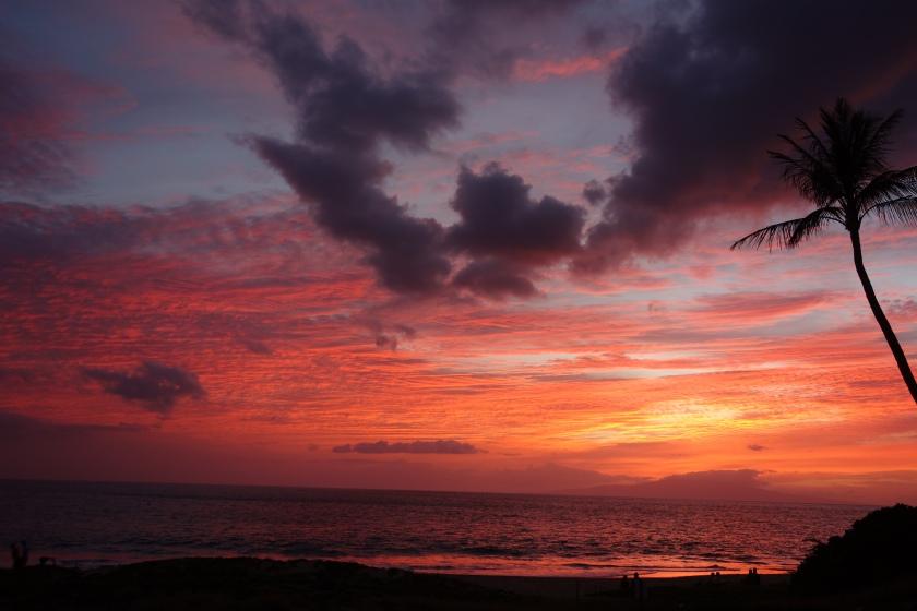 (The photo is from Kamaole Beach Park 2, Kihei, Maui