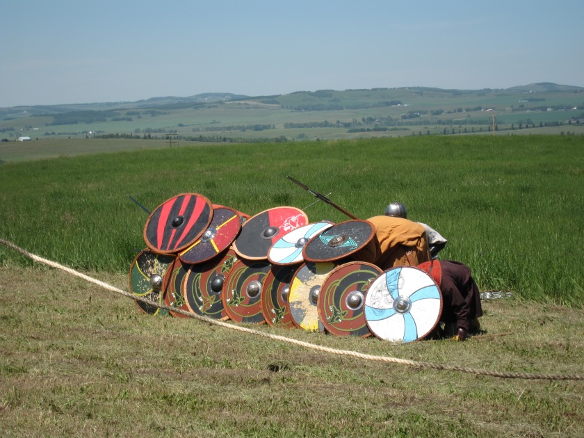 Vikings 033