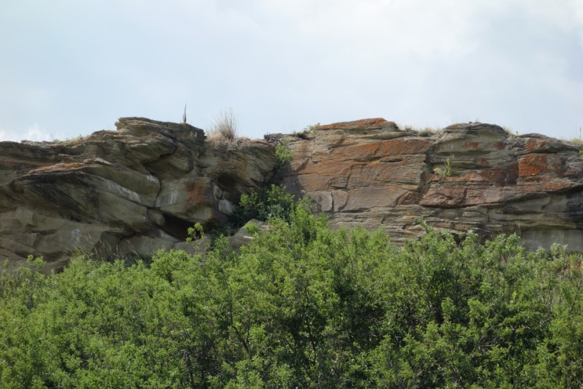 Head Smashed In Buffalo Jump 261