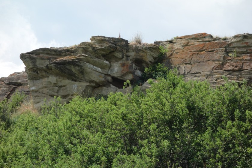 Head Smashed In Buffalo Jump 262