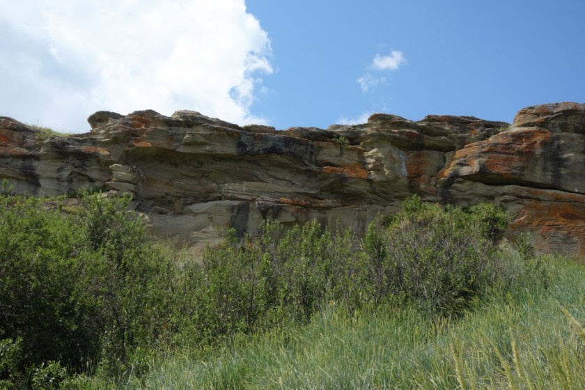 Head Smashed In Buffalo Jump 266
